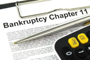 Chapter 11 Bankruptcy Document