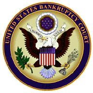 Understanding the 2005 Bankruptcy Law Changes